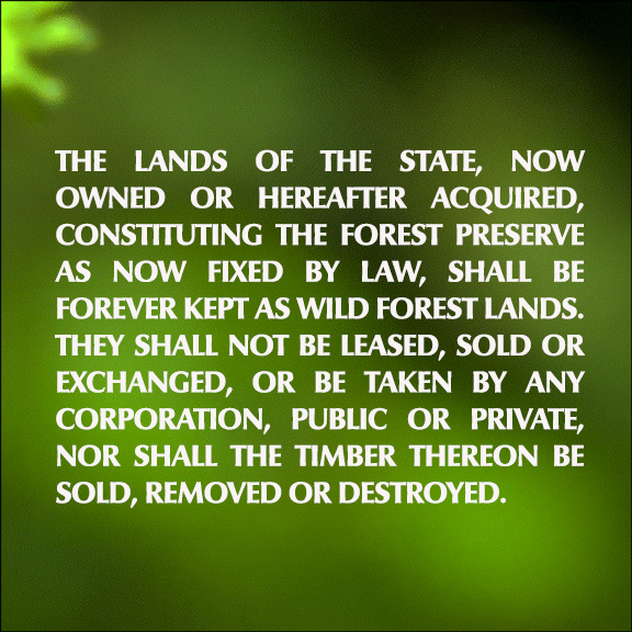 Forever Wild: Article 14 of the New York State Constitution