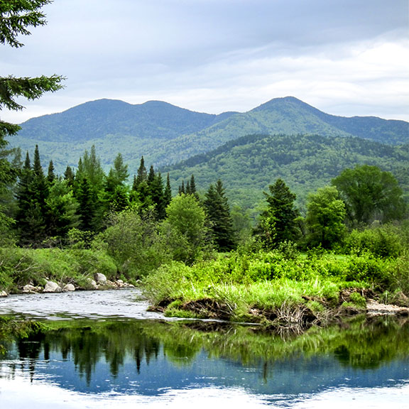 Rivers of the Adirondacks: West Branch of the Ausable near Lake Placid (5 June 2011)
